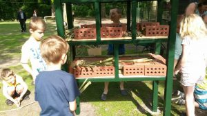 schooljeugd-bouwt-insectenhotel