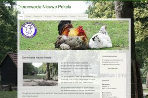 website-dwnp