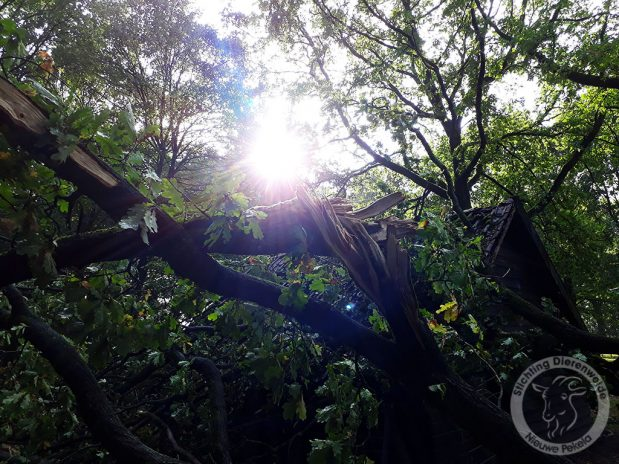 Dagboek van een Geit: Stormschade